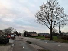 De Wordenseweg een fraaie toegangsweg van Kerkdriel? Dat is veel duurder dan verwacht