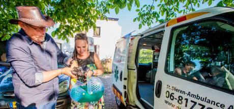Alarm bij dierenambulance Altena door tekort aan vrijwilligers
