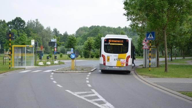 Omleiding voor Lijnbussen door werken Sinaai
