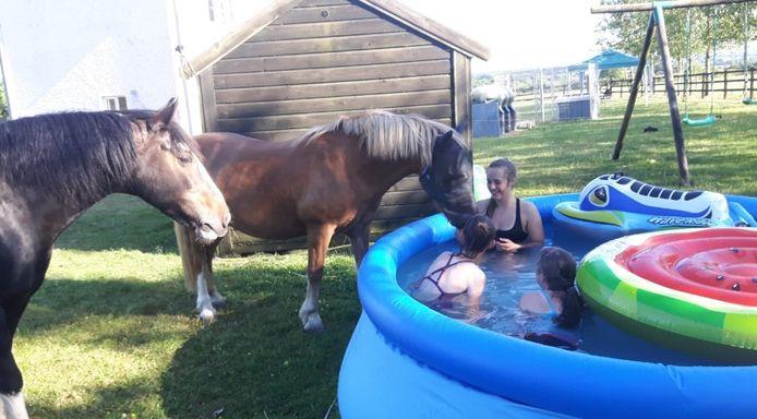 """Will Bus uit Oud Gastel stuurt een foto van haar nichtjes Ciara en Kaleigh uit Killkenny, Ierland. """"Als de temperatuur echt hoog stijgt, zijn alle mensen en dieren blij met wat verkoeling."""""""