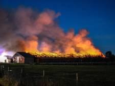 Nergens in Nederland zijn zoveel stalbranden als in Barneveld: er kwamen 82.048 dieren om het leven