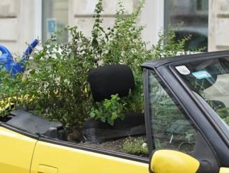Dit is het verhaal achter de overwoekerde cabriolet in Wenen
