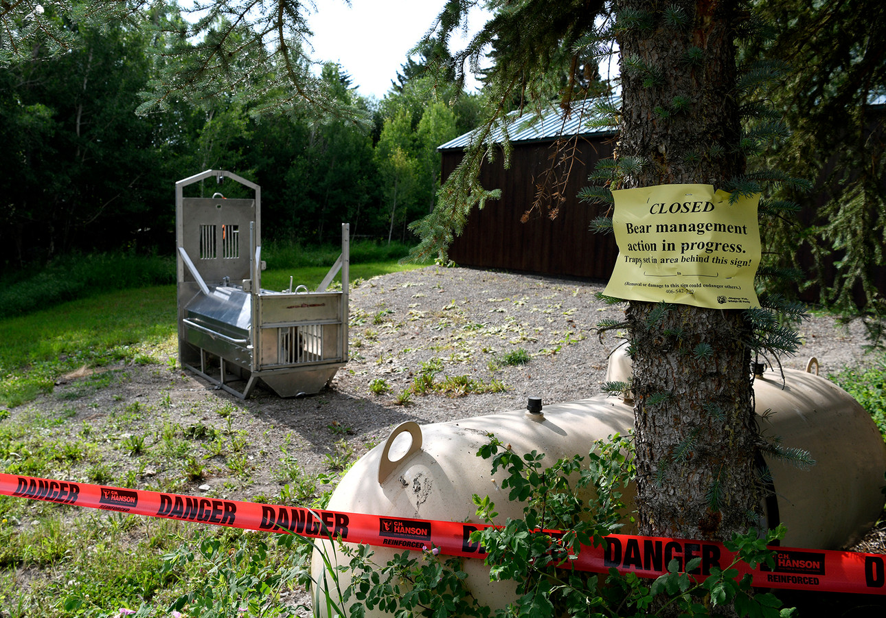 Een berenval op het kampeerterrein in Ovando, uitgezet door de natuurautoriteiten van Montana.