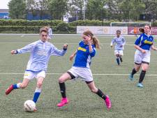 Regiocup gaat aan WVF voorbij, voorlopig blijft het bij onderlinge partijtjes