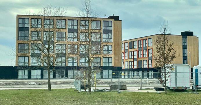 Tijdelijke woningen, zoals ze ook in Breda zouden kunnen verrijzen als het aan corporatie WonenBreburg ligt.