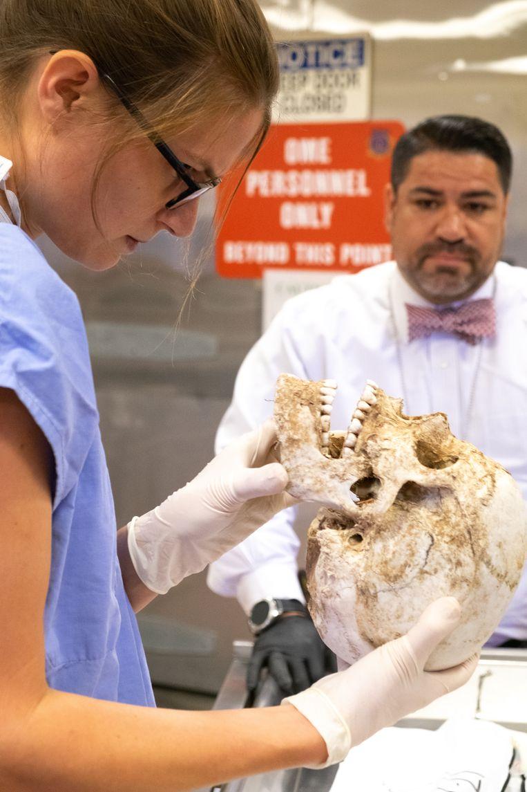 Forensisch antropologe dr. Jennifer Vollner van het mortuarium van Pima County buigt zich over lichamelijke restanten van een persoon die in de Sonorawoestijn is overleden.  Beeld Eline van Nes