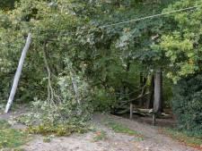Kabelbaan in speeltuin Baarn stuk door omgewaaide boom