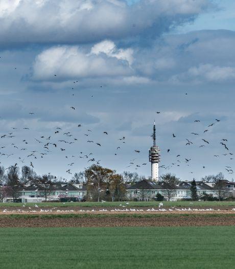 Roosendalers gefrustreerd over inspraak rond nieuwbouw ziekenhuis: 'Weggezet als kleuters'