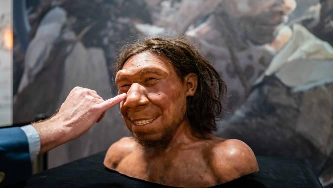 Paleo-kunstenaars Adrie en Alfons maakten Neanderthaler Krijn: 'Eerst had-ie een brutale kop'