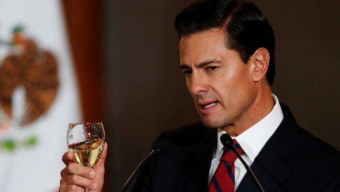 De Mexicaanse president Enrique Peña Nieto.