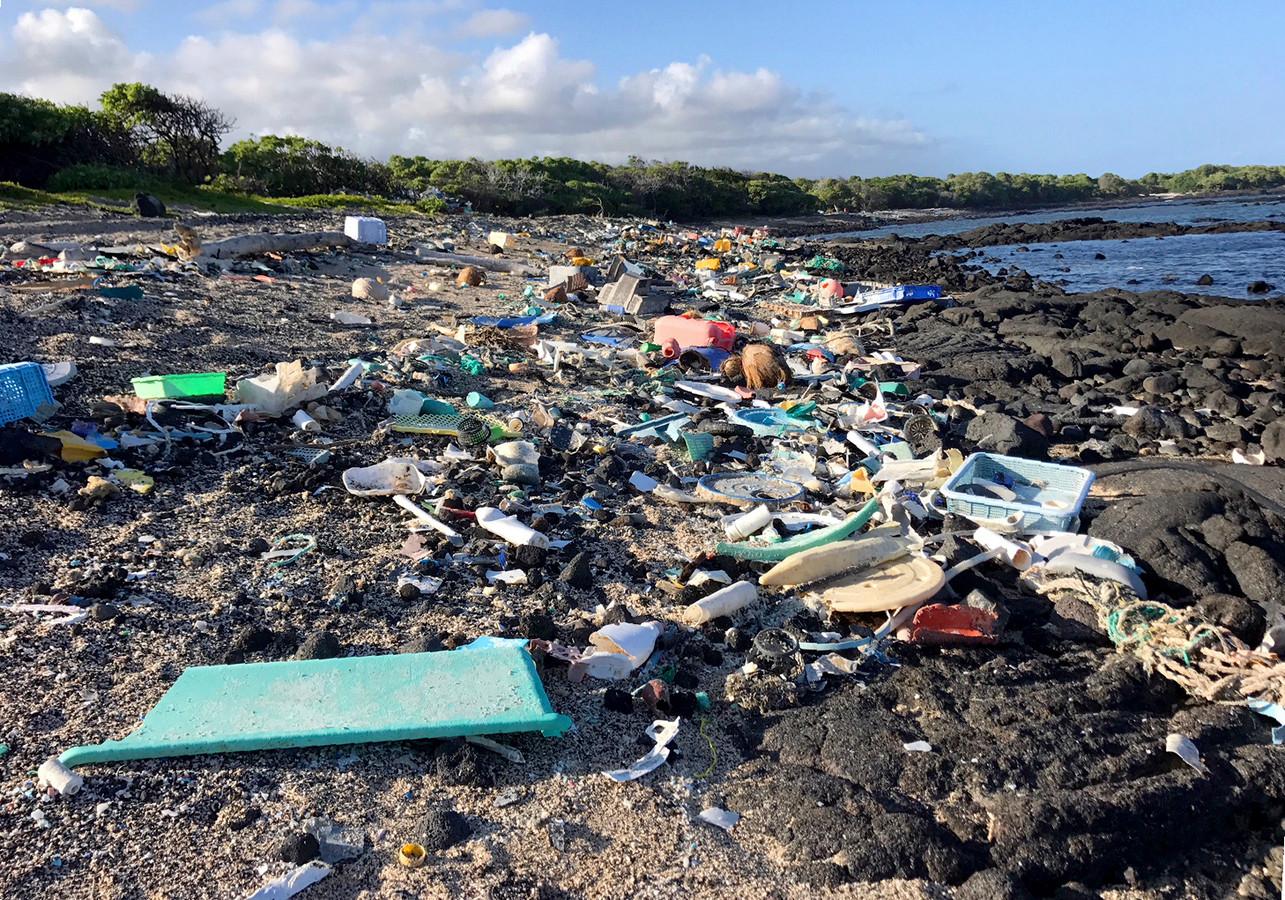 La plage de Kamilo Point à Naalehu, Hawaii, avant son nettoyage en 2018 (illustration).