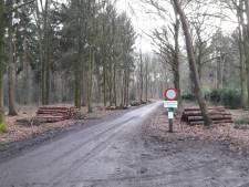 Toch petitie tegen natuurbegraven in Soest na intrekken plan