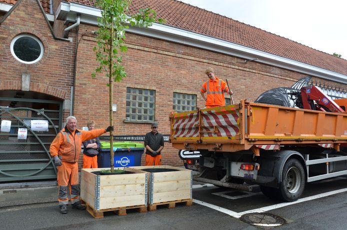 De pop-upbomen deze zomer in de Crevestraat vormden een voorbode voor de vergroening van de centrumstraat.
