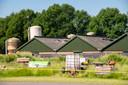 Het terrein rondom de stallen is afgezet vanwege de aanwezigheid van asbest.