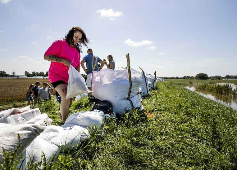Mensen helpen met het plaatsen van zandzakken op de dijken net buiten Arcen, boven Venlo. Beeld ANP
