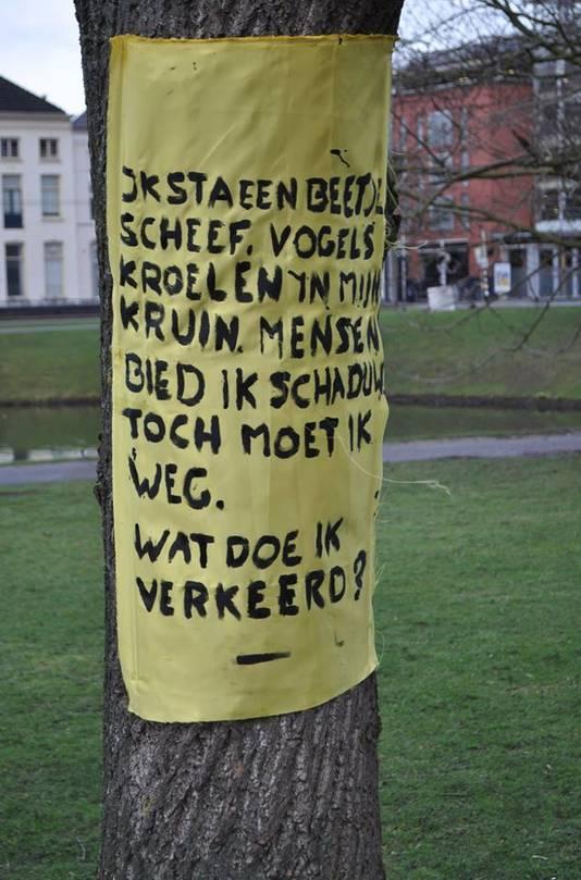 Behoud Bomen Arnhem hing dinsdagmorgen spandoeken op bomen in het Lauwersgracht Park, die op de lijst staan om gekapt te worden.  Foto's: Mark Bosch
