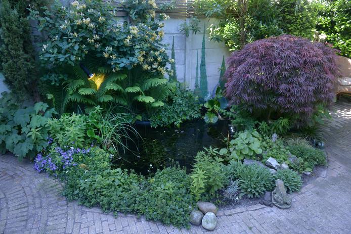 Wie in zijn plantenperken gebruik maakt van bodembedekkers, hoeft nooit meer te wieden. Zo is een duurzame tuin tegelijkertijd onderhoudsarm.