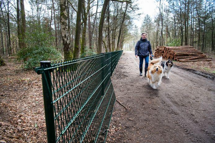 Sinds kort staat er een hek rond het Nonnebos aan de Elspeterweg in Vaassen, tot woede van enkele omwonenden en gebruikers van het bos. Zij hebben massaal handhavingsverzoeken naar de gemeente gestuurd om te voorkomen dat het bos afgesloten wordt voor wandelaars.