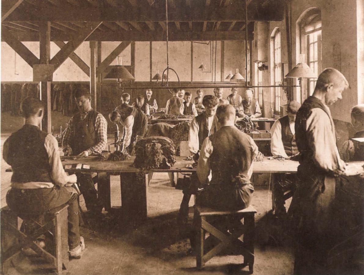 EINDHOVEN - Arbeiders die tabaksbladeren voorbewerken in de fabriek van Mignot & De Block.