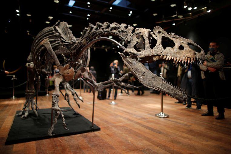 Het skelet is volgens veilinghuis Drouot meer dan 150 miljoen jaar oud. Beeld REUTERS