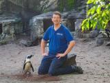 Hoe cool! Job is oppasser in de dierentuin: 'Sommige vogels zijn mysterieus'
