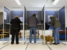 Een op de vier stemmers kiest strategisch