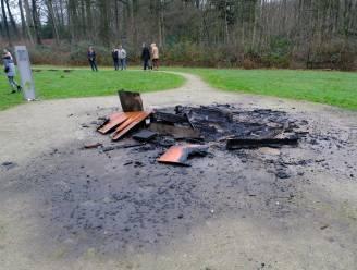 Brasschaat treurt om De Golem: vandalen steken houten reus in brand