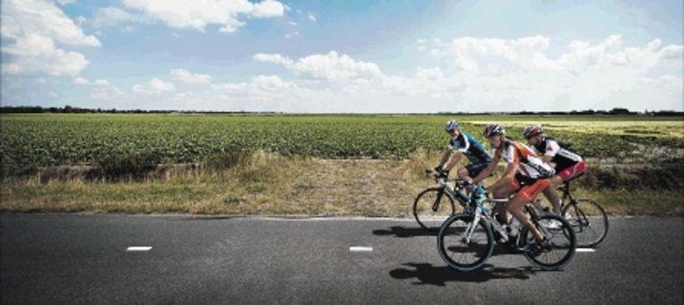 De Nederlandse landbouwsector benut zijn potentieel maar ten dele. (FOTO ERIK VAN 'T WOUD, ANP) Beeld