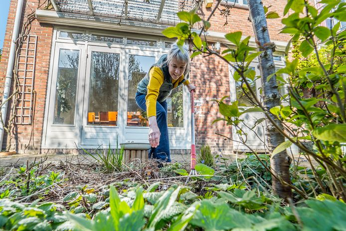 Tuinliefhebster Marian van den Beitel.