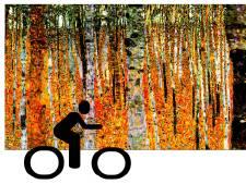 Op de fiets naar stilte-expo in Renkum