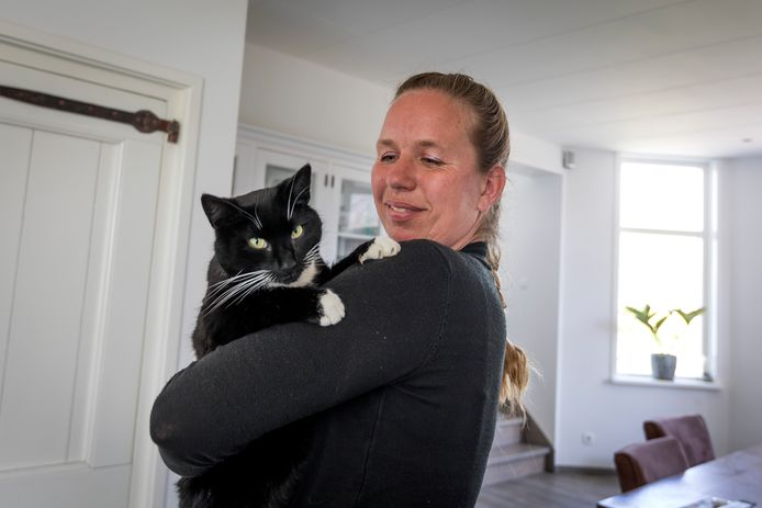 Kat Beau is veilig terug bij zijn baasje.
