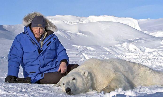 David Attenborough in Frozen Planet. De ijsbeer is verdoofd voor onderzoek.