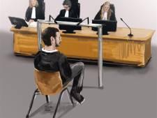 Eis: vier jaar cel wegens doodrijden Vlissingse Inge Caljouw