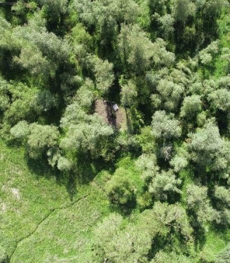 Twee mannen opgepakt voor beschadigen van natuurgebied én het hebben van wietplantage