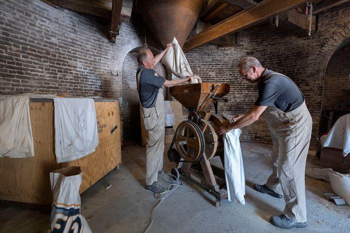 Molenaars Twan Rooijakkers en Twan van Bommel (rechts) zijn erin geslaagd De Volksvriend in Gemert als enige in Nederland  lupine te laten malen.