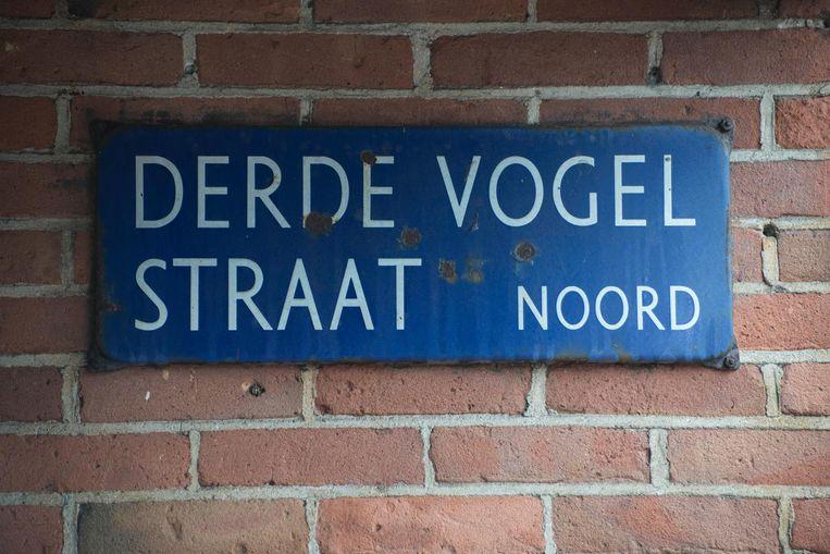 Derde Vogelstraat Beeld Charlotte Odijk