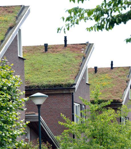 Met subsidie groene daken aanleggen, regenwater opvangen en tuinen vergroenen in Wijk bij Duurstede