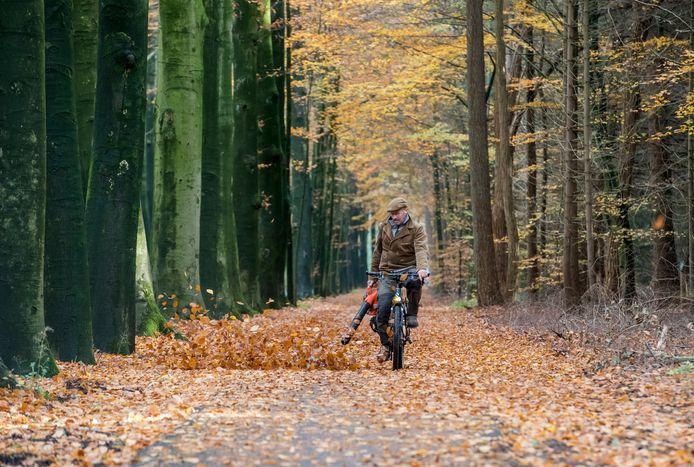 Theo van Goor uit Koudhoorn baant zich met de bladblazer een weg door het bladerdek om het fietspad langs de weg te kunnen zien.