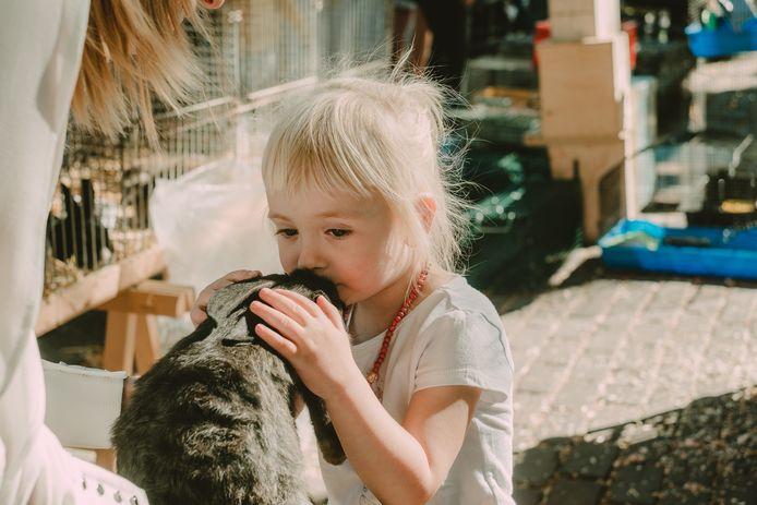 Illustratie dierenmarkt in Mol