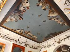 Jachtkamer Paleis Soestdijk tijdelijk open voor publiek