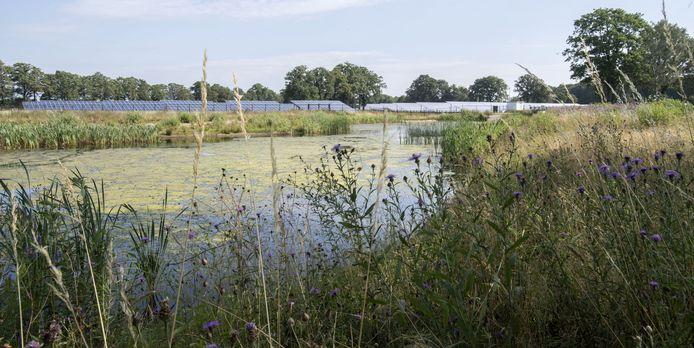 Het  zonnepark aan het Ruiterpad (voorheen Ruiterweg) nabij het industrieterrein De Laarberg bij Groenlo.