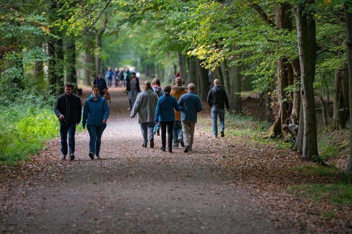 In vergelijking met vorig jaar gaan 30 procent meer mensen wandelen in natuur- en bosgebied zoals hier in Buggenhout.