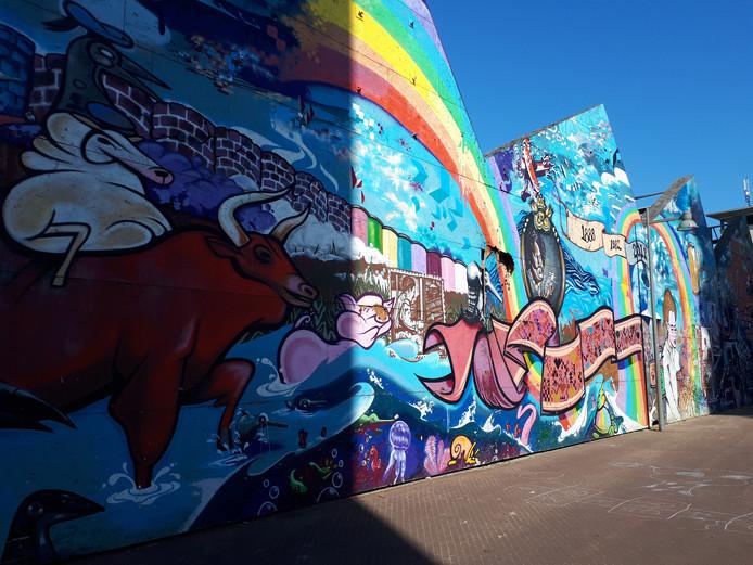 Nog even genieten van het graffitikunstwerk op de wand van de oude tapijtfabriek Bergoss. De platen verdwijnen wanneer de nieuwe plannen voor het voormalige Bergoss werkelijkheid worden.