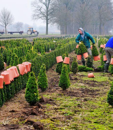 Gemeenten 'not amused' met nieuw plan voor buitengebied vlak vóór opdelen van Haaren