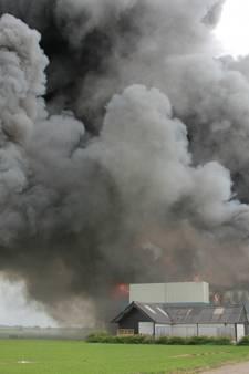 20.000 varkens dood door grote brand in stallen bij Erichem
