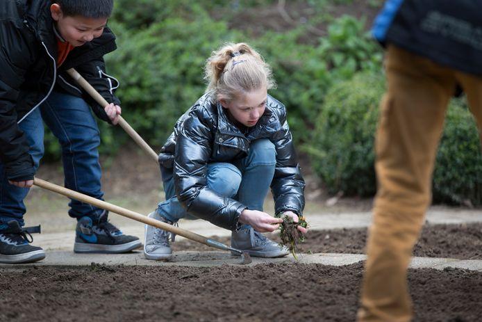 Kinderen van openbare school De Toorts in Didam aan het werk.