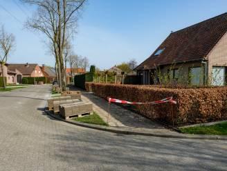 Anjerstraat wordt onthard: voetpad moet wijken voor groen