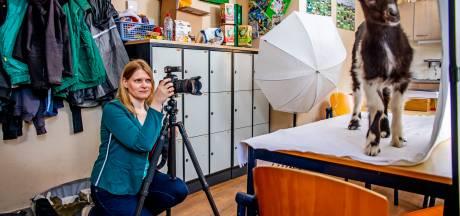 Deze natuurfotografe krijgt alle beesten voor haar lens: 'Die geitjes breken af en toe de tent af'