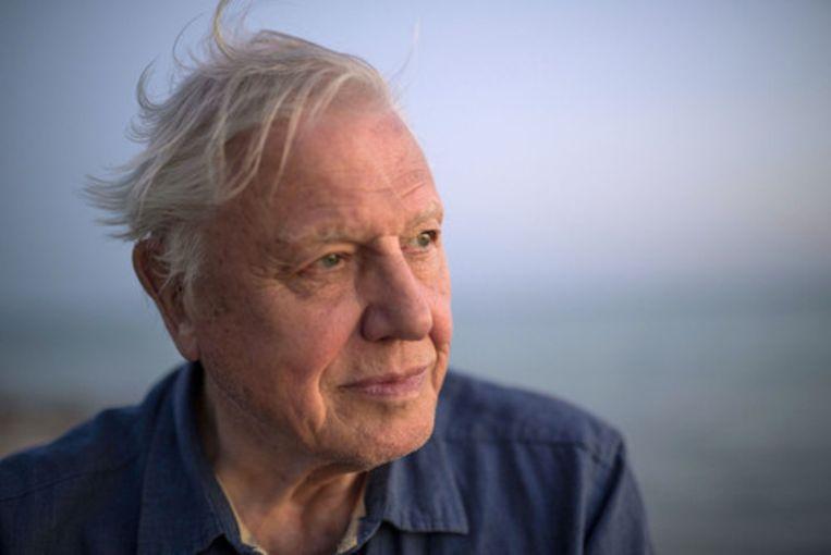Richard Attenborough. Beeld rv
