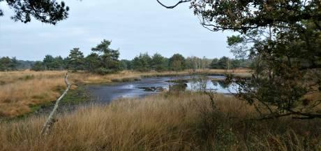 Brabantse natuur komt miljoenen kubieke meters  grondwater te kort